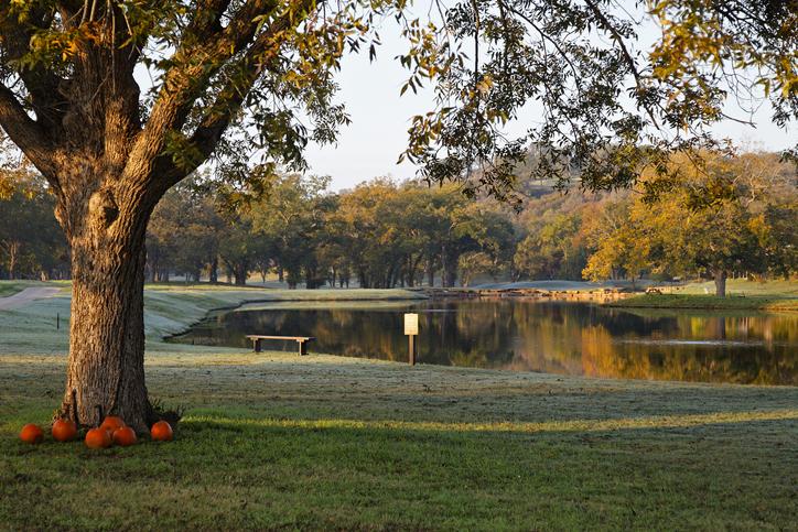 Austin Texas fall landscape